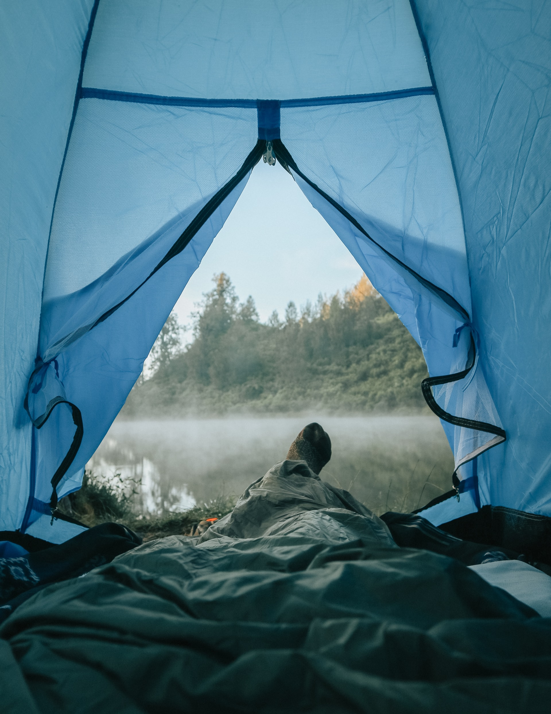 Do Mosquito Nets Work?